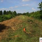 Mulczowanie terenu Gniezno_rozdrabnianie drzew_Hermar Gniezno_3