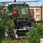 Mulczowanie terenu Gniezno_rozdrabnianie drzew_Hermar Gniezno_9